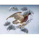 摺り友禅男物額裏(広幅の羽裏) 「白山」 ⑫松に鷹
