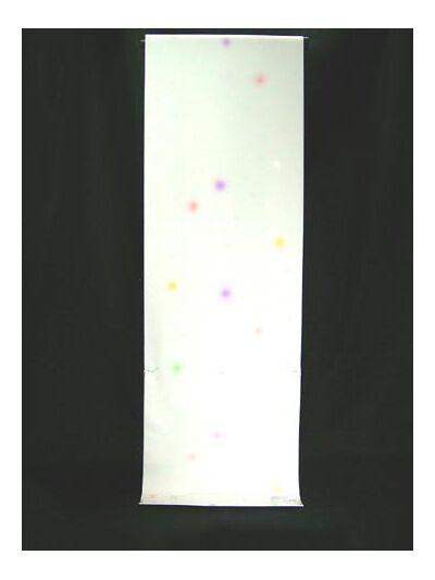 洗える長襦袢 水玉紋意匠 白地にぼかし ミックス